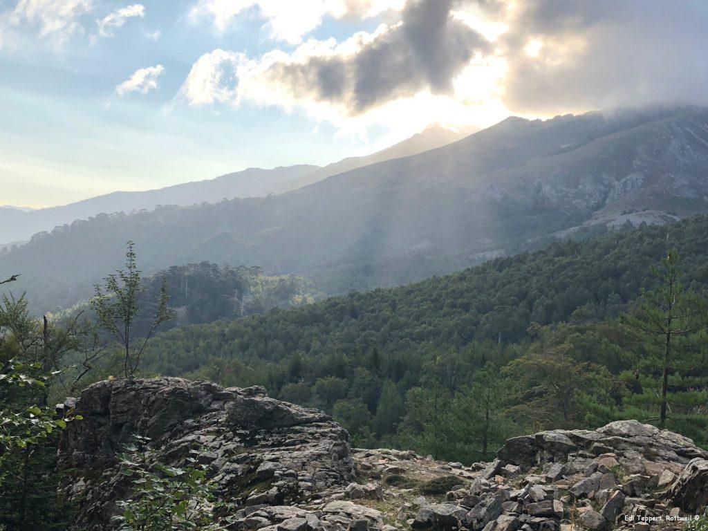 Das erste Stück der Etappe geht durch den Wald an der Ostseite entlang