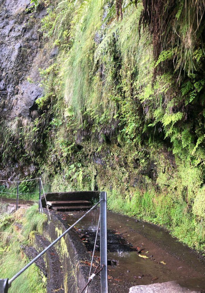 Auf der Levada unterwegs im Steilhang
