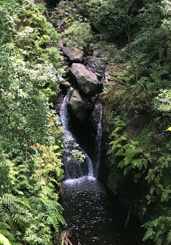 Wasser Zulauf in die Levada da Faja do Rodrigues