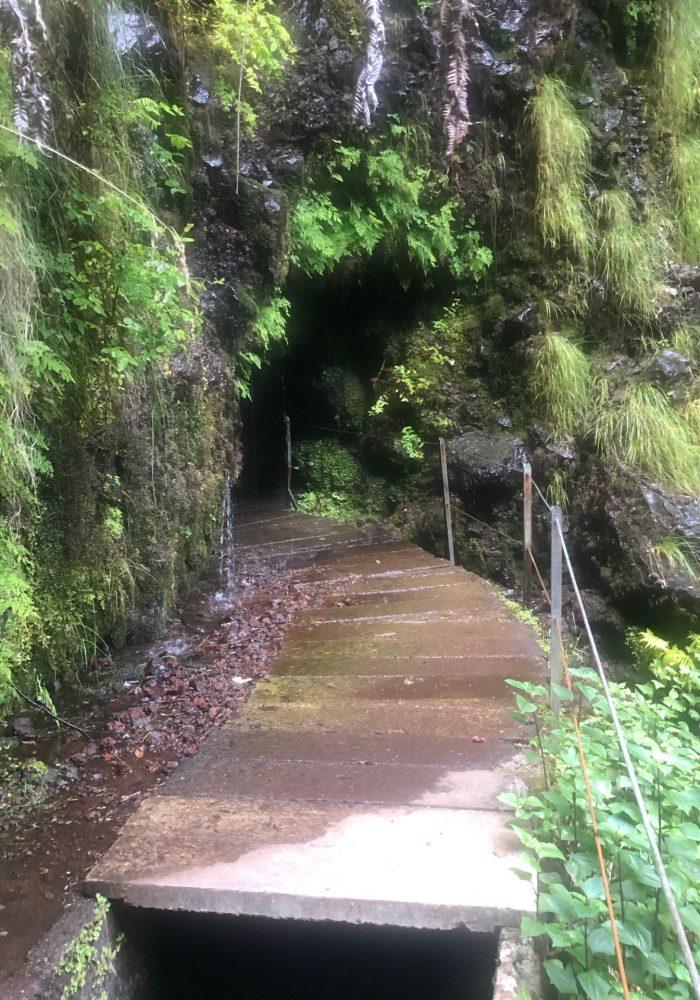 Unterwegs auf dem Auf dem Weg zum Wegweiser für den Levada da Faja do Rodrigues