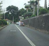 Auf der Fahrt zum Hotel sehen wir Touristen, die mit dem Korbschlitten von Monte nach Funchal unterwegs sind