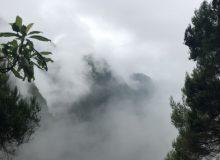 Der Nebel zieht immer mehr auf und die Sicht wird zunehmend schlechter
