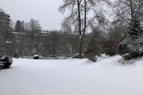 Verschneite Landschaft im Park