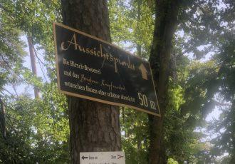 Der Weg zum Aussichtspunkt ins Donautal